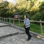 My Walking Spree In Bogota